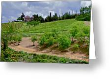 San Casciano In Val Di Pesa- Italy Greeting Card