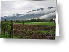 San Comino Valley Vines Greeting Card