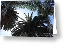 San Diego Breeze Greeting Card