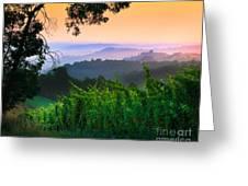 San Gimignano Hills Greeting Card