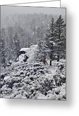 San Jacinto December Wilderness Greeting Card