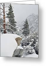 San Jacinto Winter Wilderness Greeting Card