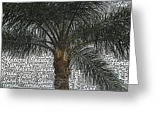 San Palm  Greeting Card