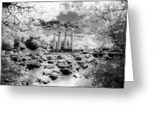 Sanctuary Of Gods And Goddesses Greeting Card
