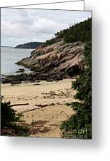 Sand Beach Acadia Park Greeting Card