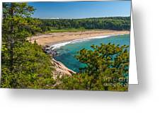 Sand Beach In Acadia Greeting Card