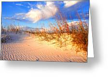 Sand Dune And Sea Oats At Sunset Greeting Card