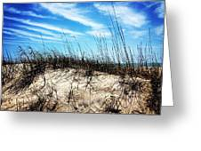 Sand Dune At Alantic Beach Greeting Card by Joan Meyland