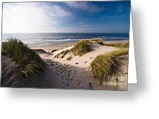 Sand Dune Greeting Card by Boon Mee