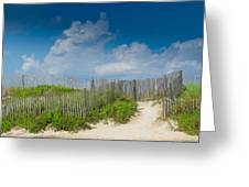 Sand Dune Delight Greeting Card