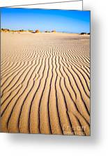 Sand Dunes At Eucla Greeting Card by Colin and Linda McKie