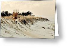 Sand Dunes At Penny Beach Greeting Card