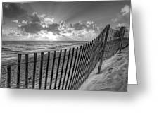 Sand Dunes In Black And White Greeting Card