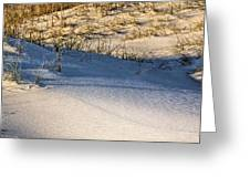 Sand Dunes Of Navarre Greeting Card
