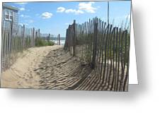 Sand Fence At Southern Shores  Greeting Card by Cathy Lindsey