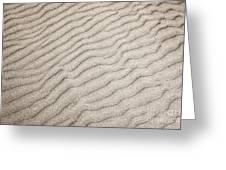 Sand Ripples Natural Abstract Greeting Card