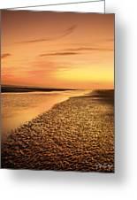 Sand Ripples Greeting Card