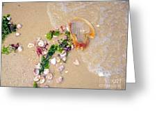 Sand Sea And Shells Greeting Card