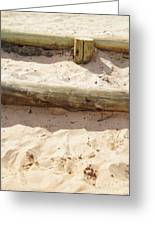 Sand Steps Greeting Card