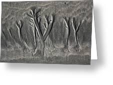 Sand Trees Greeting Card