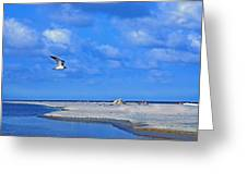 Sandbar Bliss Greeting Card