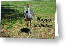 Sandhill Crane Birthday Greeting Card