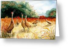 Sandhill Serenade Greeting Card