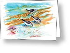 Sandpiper Trio Greeting Card