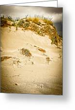 Sands Of Elafonisi Greeting Card