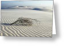 Sands Of Time Brazil Greeting Card