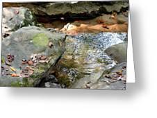 Sandstone Boulders At Hurricane Branch Greeting Card