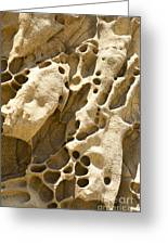 Sandstone Rock Formation Two At Big Sur  Greeting Card by Artist and Photographer Laura Wrede