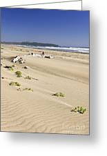 Sandy Beach On Pacific Ocean In Canada Greeting Card