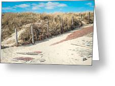 Sandy Dunes In Holland Greeting Card
