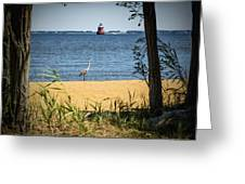 Sandy Pt Shoal Lighthouse And Blue Heron Greeting Card