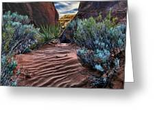 Sandy Trail Arches National Park Greeting Card