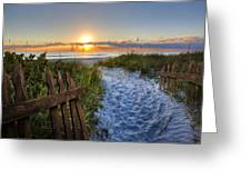 Sandy Trail Greeting Card