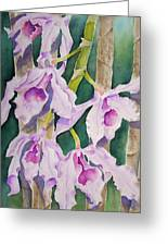 Sandy's Orchids Greeting Card