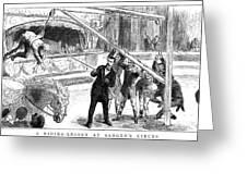 Sanger's Circus, 1884 Greeting Card