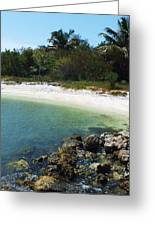 Sanibel Cove Greeting Card by Anna Villarreal Garbis