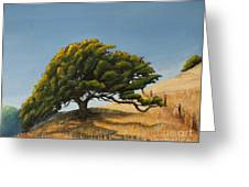 Santa Clara Valley Greeting Card