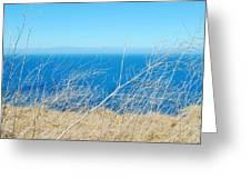 Santa Cruz Island Sea Of Grass Greeting Card