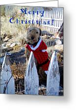 Santa Dog-2 Greeting Card