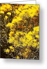 Santa Fe Yellow Greeting Card