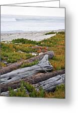 Santa Monica Mountains County Line Beach Greeting Card