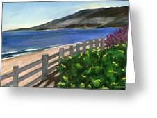 Santa Monica Overlook Greeting Card