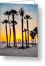 Santa Monica Palms Greeting Card