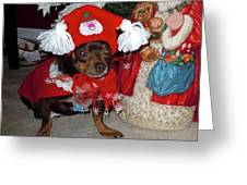 Santa's Helper Greeting Card