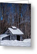Sap House II Greeting Card by Alana Ranney