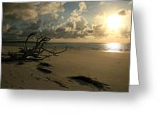 Sapelo Sunrise Greeting Card